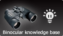 Binocular knowledge base
